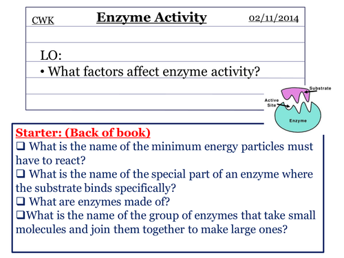 The effect of temperature & pH on enzyme activity