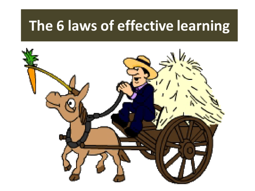 The 6 laws of effective learning