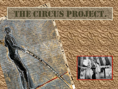 Circus Project