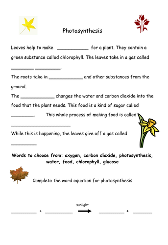 Photosynthesis Worksheet By Geminiwhizz Teaching Resources