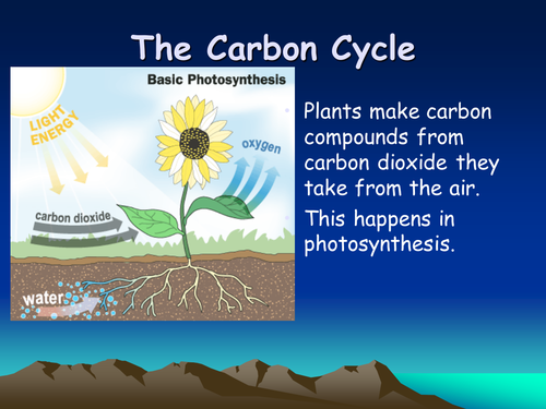 Carbon cycle powerpoint by stevej64 teaching resources tes ccuart Image collections