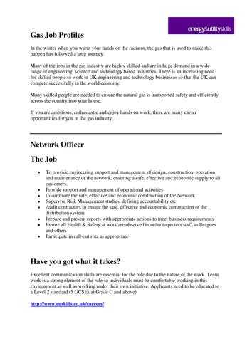 Network Officer Job Profile