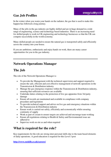 Network Operations Manager Job Profile by EU_skills
