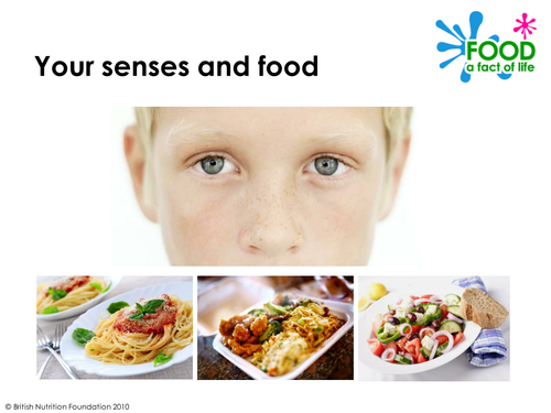 Your Senses and Food - PowerPoint