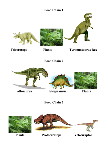 Dinosaur Food Chains by jwraft   Teaching Resources