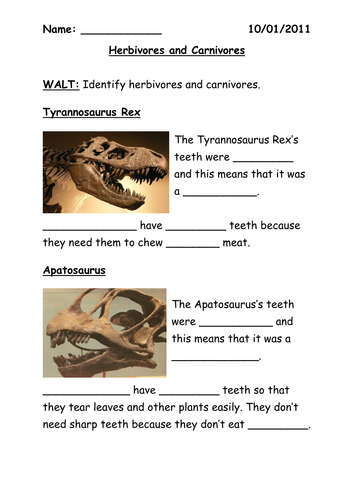 Carnivore herbivore sorting activity by BethAParker - Teaching ...