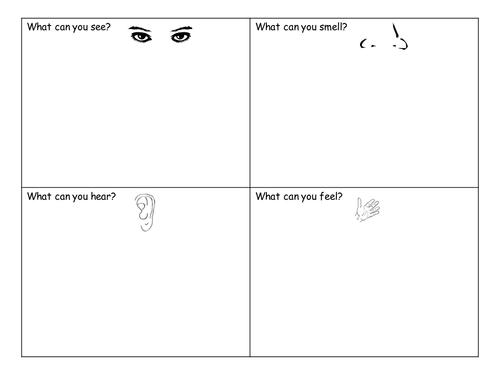 Number Names Worksheets » Five Senses Booklet - Free Printable ...