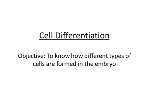 Cell differentiation powerpoint by SallyUAE Teaching Resources Tes – Cell Differentiation Worksheet