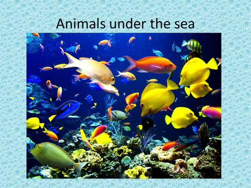 Under the sea ppt by vlm1985 teaching resources tes toneelgroepblik Image collections