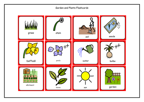 Garden And Plants Flashcards 6179780 on Parts Of A Seed Worksheet