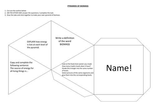 make your own pyramid of biomass by toomanykays teaching resources