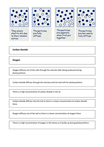 Diffusion Work Sheet by joolia_88 - Teaching Resources - Tes