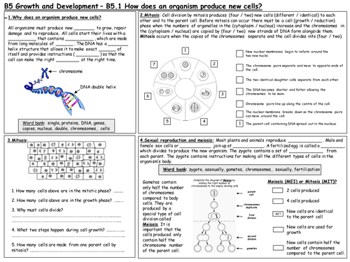 B5 Growth and Development Revision