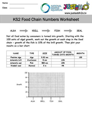 KS2 Ecosystems and Food Webs by JustAddH20 - Teaching Resources - TES
