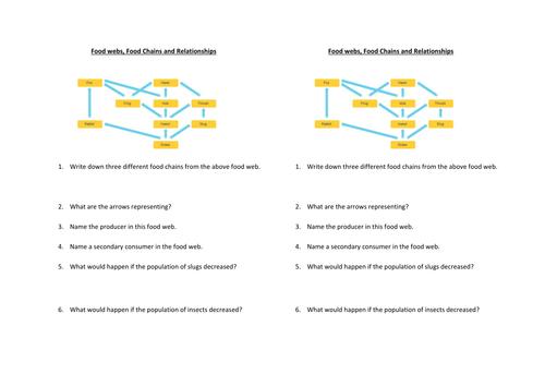 Food Chains Food Webs Worksheet By Prettyinbiology