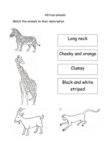 handa 39 s surprise animal descriptions by lcdixon88 teaching resources. Black Bedroom Furniture Sets. Home Design Ideas