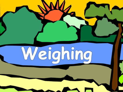 Weighing - A fishy PowerPoint