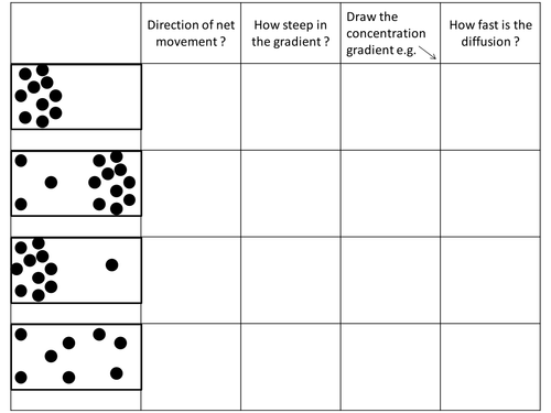 Diffusion Activities by GemmaButton Teaching Resources TES – Concentration Worksheet