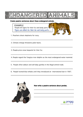 Printables Endangered Species Worksheets endangered animals the passive voice by jobowler teaching resources tes