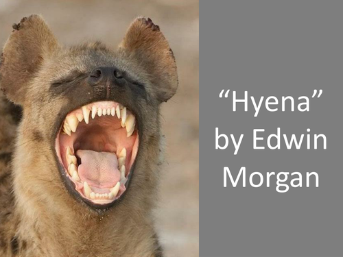 Hyena 2014 Review 'Hyena'...