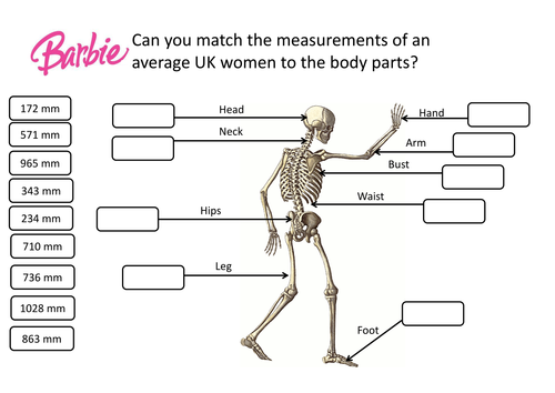 Barbie Ratio Proportion Lesson by vhughes5 Teaching Resources – Ratios and Proportions Worksheet
