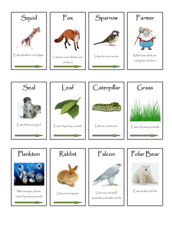 Plants, Animals and Microbes Full Scheme KS2 KS3