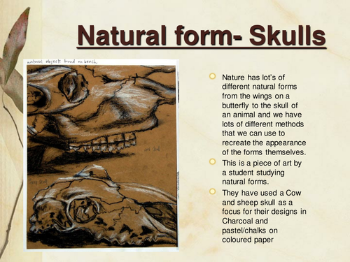 Drawing skulls in different materials