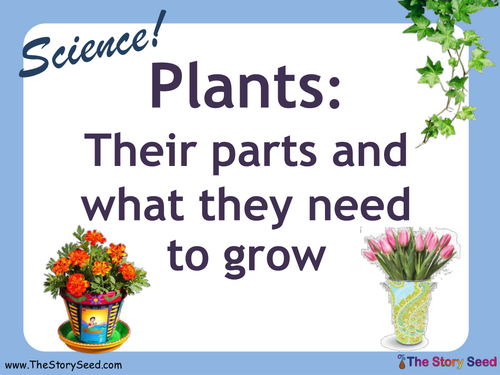 What Plants Need - an IWB presentation by bevevans22 - Teaching ...