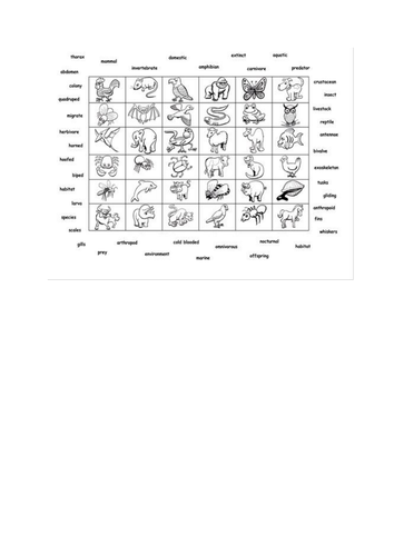 Grid for Putting things in order activity