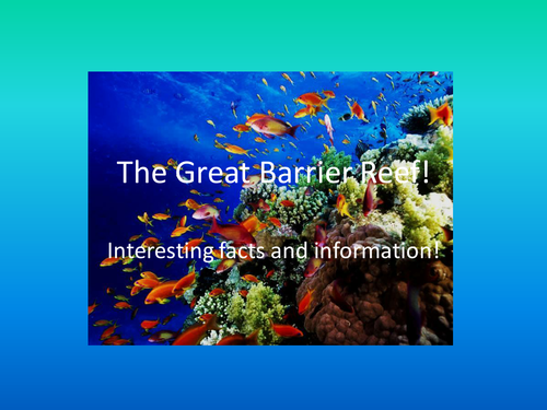 Great Barrier Reef Facts and Info by pickup01  Teaching Resources