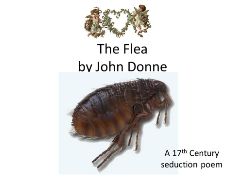 poem analysis the flea The poem, the dream,by john donne  subscribe to our mailing list and get new poetry analysis updates straight to your inbox the flea by john donne.