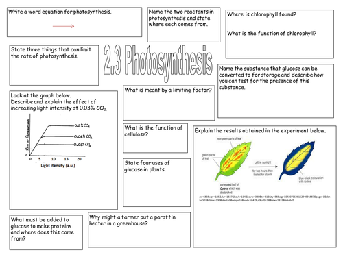 Photosynthesis Worksheet by jhart Teaching Resources TES – Photosynthesis Worksheet Middle School