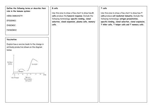 how to begin a summary response