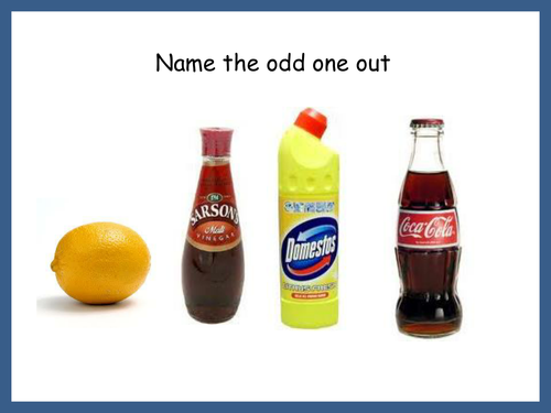 Let's play a game called 'Odd One Out' | English Language Blog |Hampsters The Odd Ones Out