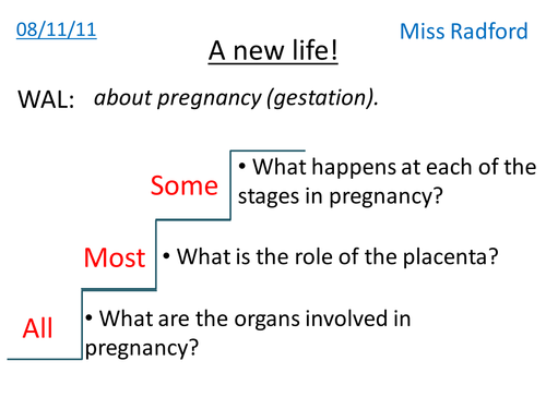 The Human Reproductive System by Astronyxis Teaching Resources TES – Human Reproduction Worksheet