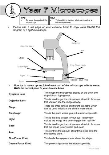 Parts Of A Microscope Worksheet Teaching Resources