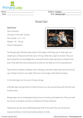 Reading comprehension - Bengal tiger by loulabell86 | Teaching Resources