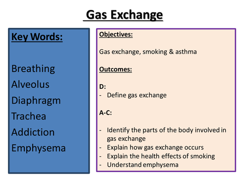 Respiration & Gas Exchange