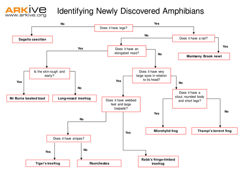 Species Discovery Keys And Classification By Arkive border=