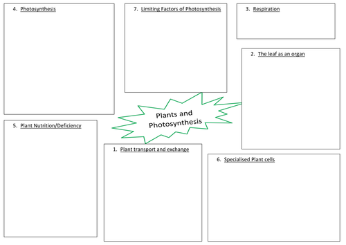 Photosynthesis in Plants by HamiltonTrust Teaching Resources TES – Photosynthesis Worksheet Middle School