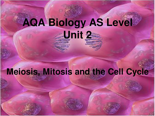ap biology essay mitosis meiosis Ap biology cell division: mitosis and meiosis the objective of this lab is to better understand the processes of mitosis and meiosis by observing and conducting.
