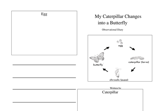 Observational diary caterpillar to butterfly by for Diary writing template ks1
