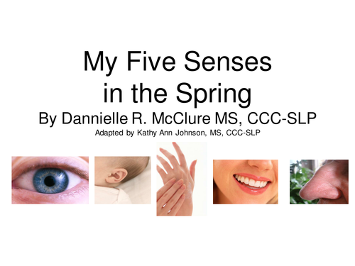 The Five Senses - Spring
