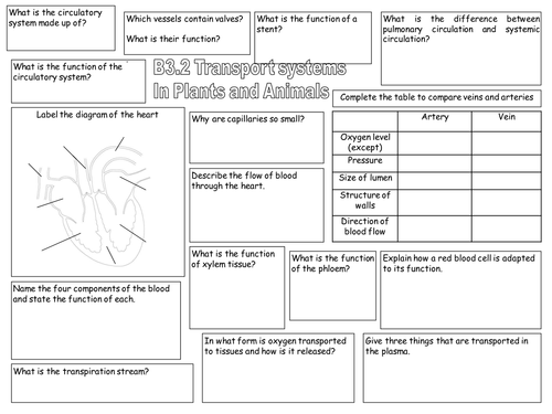 Aqa Gcse B3 2 Transport In Plants And Animals By