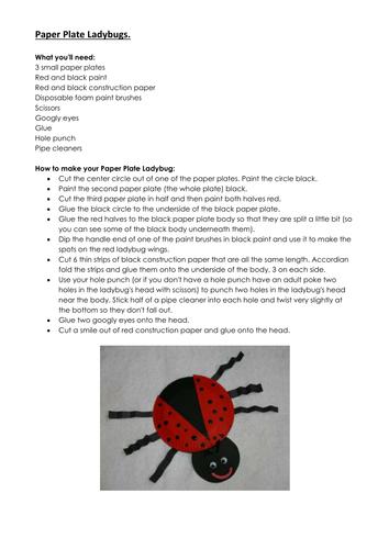 Mini Beasts - Ladybugs