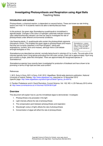 Photosynthesis practical - using algal balls