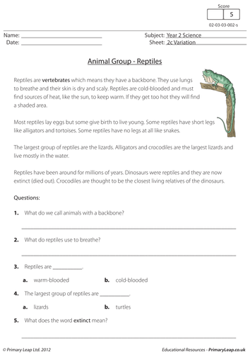 KS1 Science resource: Variation - Reptiles by loulabell86 | Teaching ...