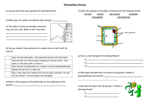 Photosynthesis HOW DO PLANTS MAKE FOOD by coreenburt Teaching – Photosynthesis Worksheet Middle School
