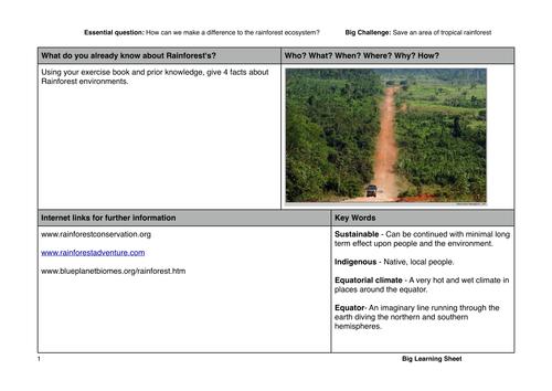 Amazon rainforest future decision making lesson