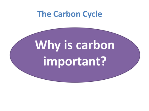 B1 5.4 Carbon Cycle
